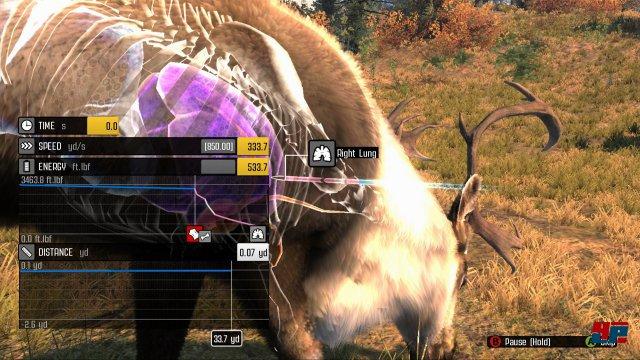 Screenshot - Big Game Hunter: Pro Hunts (PC)