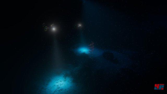 Screenshot - Beyond Blue (Linux)
