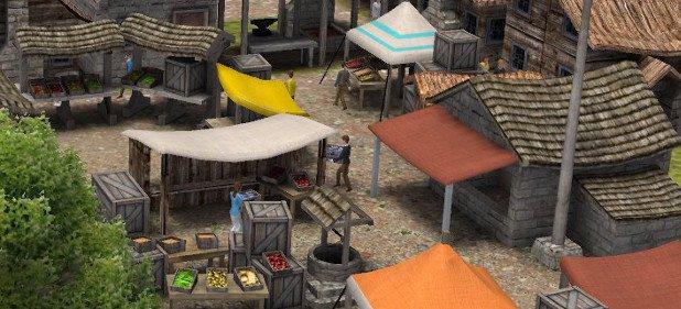 Banished (Strategie) von Shining Rock Software