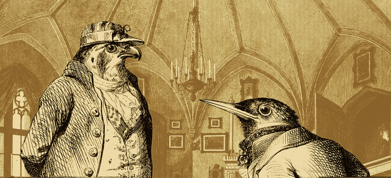 Aviary Attorney: Investigatives Vogel-Adventure