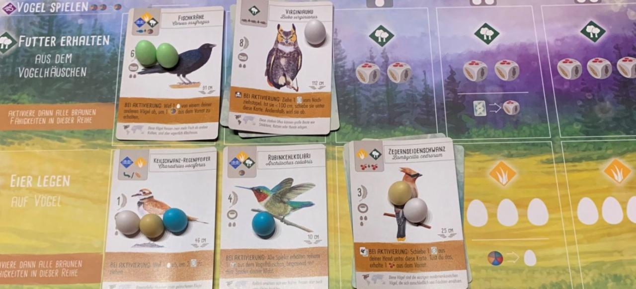 Flügelschlag: Sammeltaktik in der Vogelwelt - Das Kennerspiel des Jahres 2019?