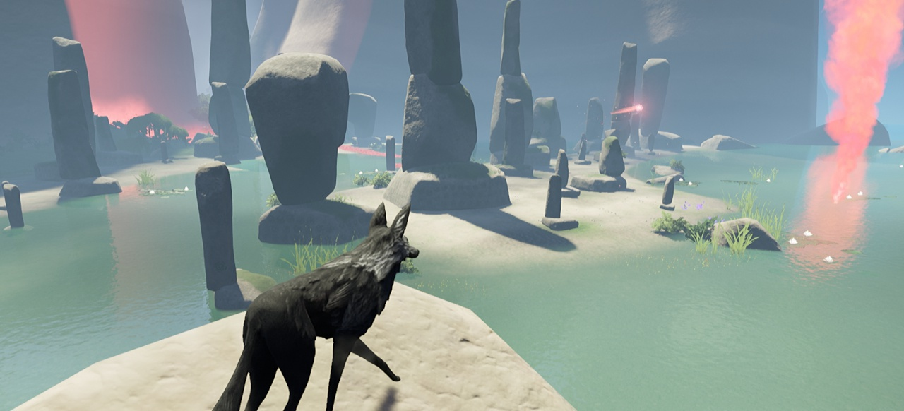 Der mit dem Wolf läuft
