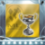 Erster Erfolg: Meister-Liga