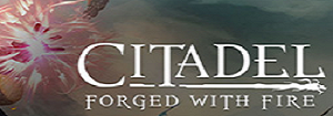Citadel: Forged with Fire Server Game-Server