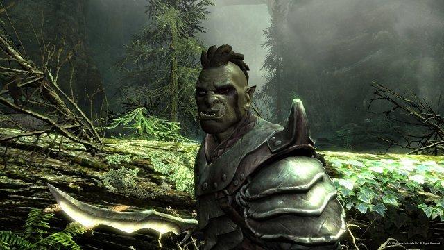 Screenshot - The Elder Scrolls V: Skyrim (PC) 2276012