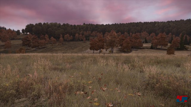 Screenshot - DayZ (PC) 92478990