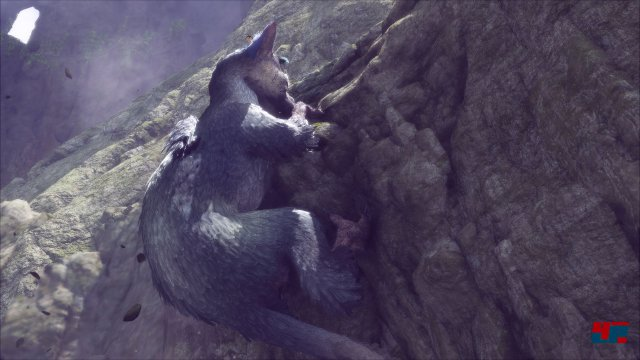 Screenshot - The Last Guardian (PS4) 92537344
