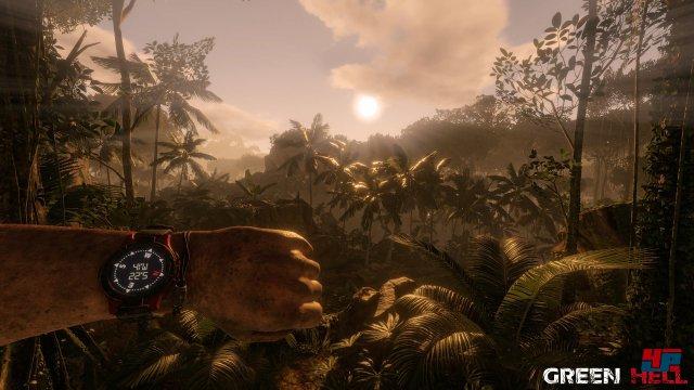 Screenshot - Green Hell (PC) 92565347