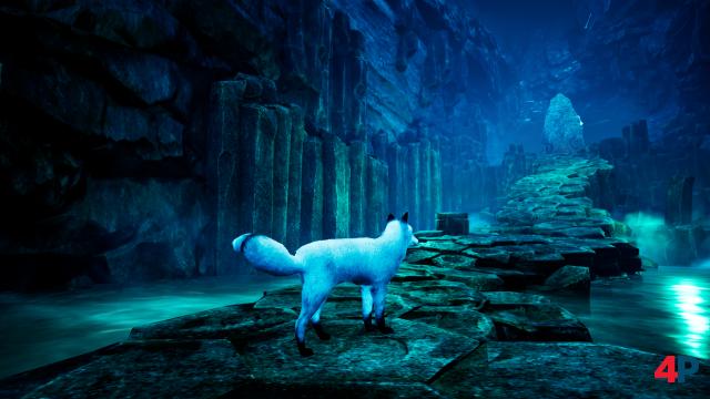 Screenshot - Spirit of the North (PS4) 92600039