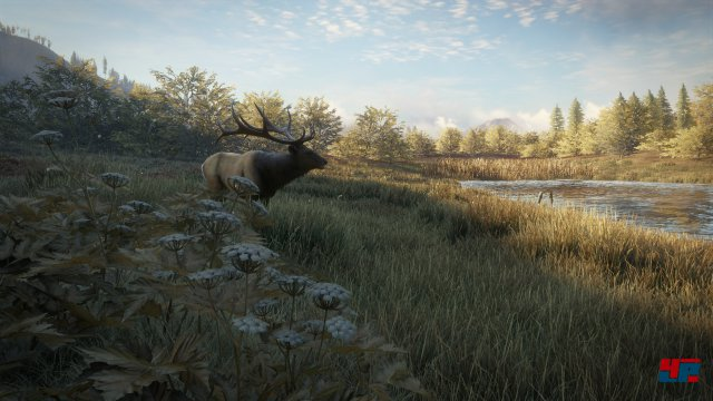 Screenshot - theHunter: Call of the Wild (PS4) 92543001