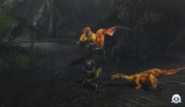 Screenshot - Monster Hunter 3 Ultimate (Wii_U) 92443702