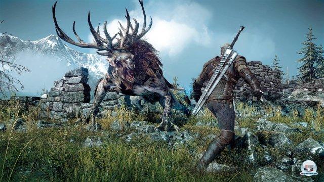 Screenshot - The Witcher 3: Wild Hunt (PC) 92464049