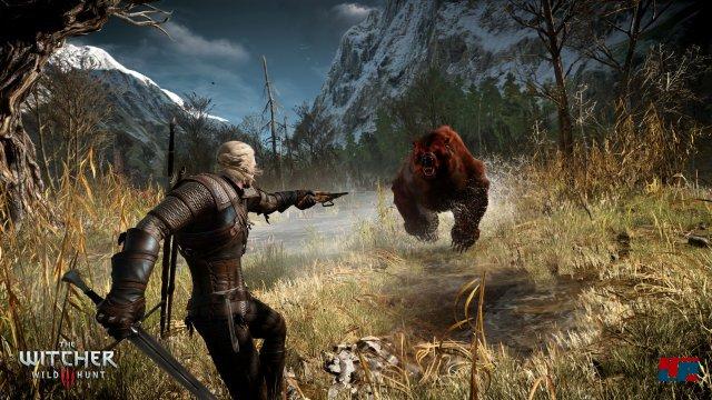 Screenshot - The Witcher 3: Wild Hunt (PC) 92484541