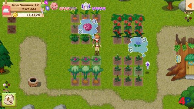Screenshot - Harvest Moon: Light of Hope (PS4) 92595804