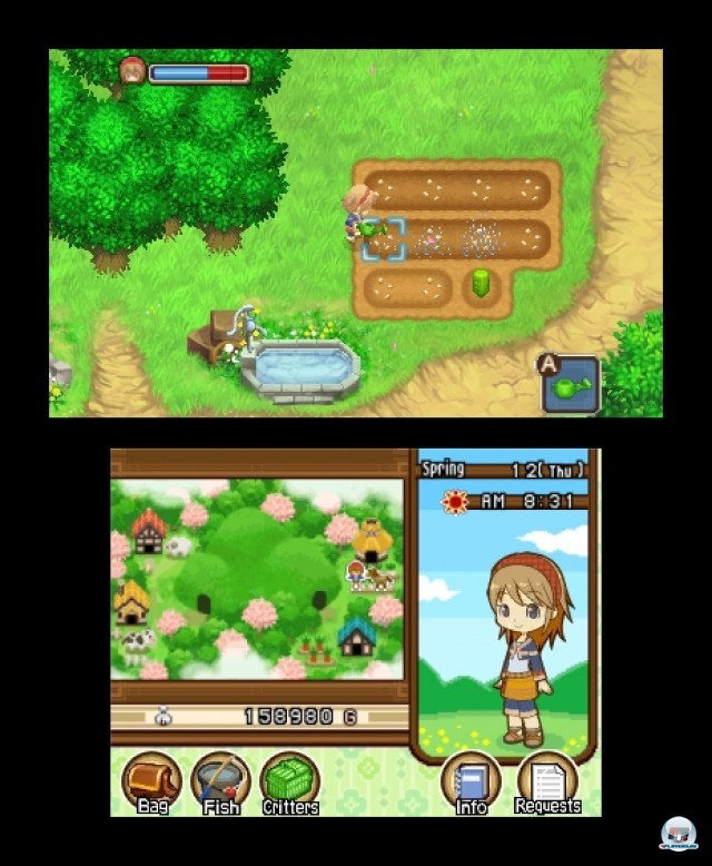 Screenshot - Harvest Moon: The Tale of Two Towns (3DS) 2232153