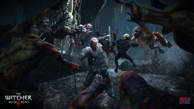 Screenshot - The Witcher 3: Wild Hunt (PC) 92484553