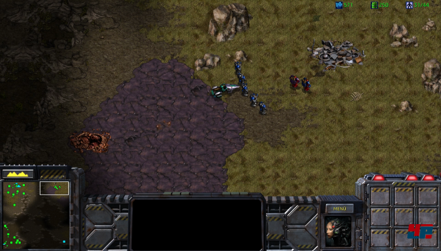 Screenshot - StarCraft (PC) 92550938