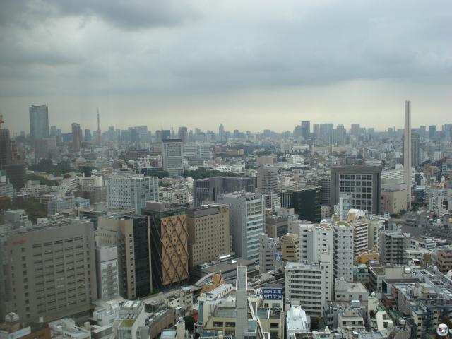 Für alle, die es noch nicht wissen sollten: Tokyo ist mal echt groß. Also wirklich verdammt, verdammt groß! Eine Rundfahrt mit der S-Bahn um den inneren Zirkel der Stadt dauert ziemlich genau eine Stunde. Was sehr lang ist, falls man keinen Sitzplatz erwischen sollte. Was zwischen 0 Uhr und Mitternacht quasi ausgeschlossen ist. 2008198