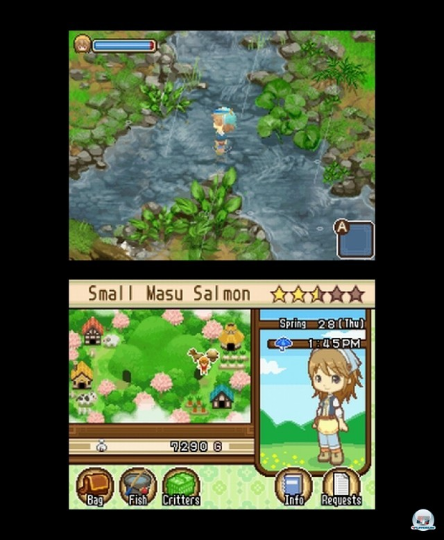 Screenshot - Harvest Moon: The Tale of Two Towns (NDS) 2232107