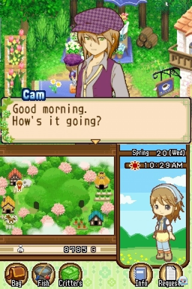 Screenshot - Harvest Moon: The Tale of Two Towns (NDS) 2232014