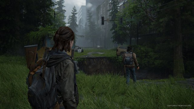 Screenshot - The Last Of Us Part 2 (PS4) 92615570