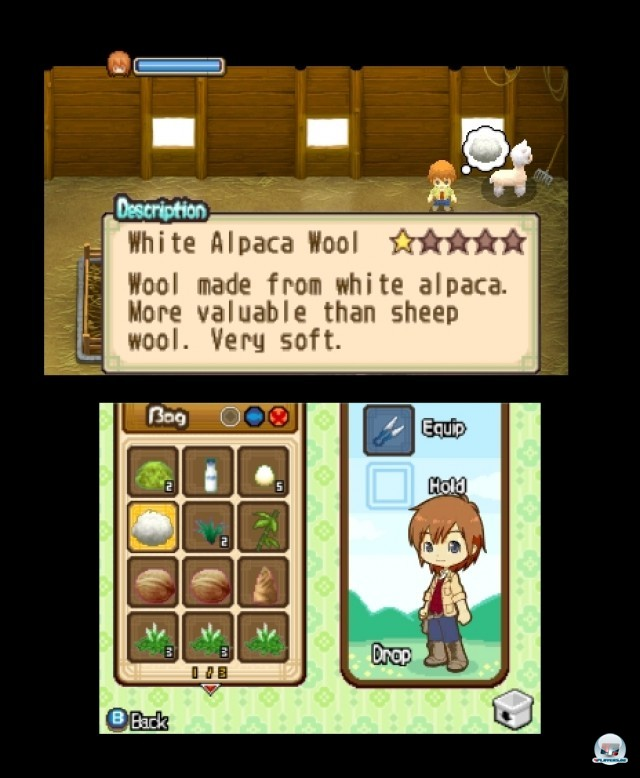 Screenshot - Harvest Moon: The Tale of Two Towns (3DS) 2232282