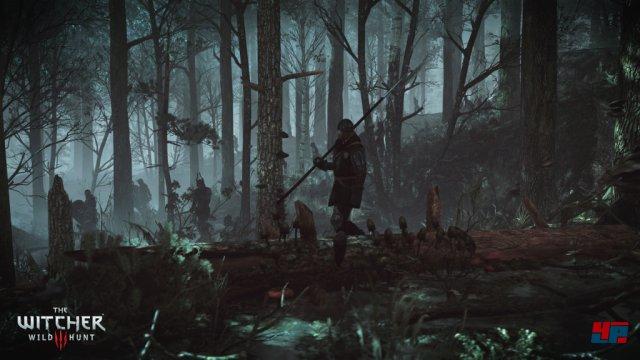 Screenshot - The Witcher 3: Wild Hunt (PC) 92484860
