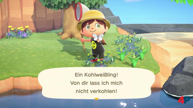 Screenshot - Animal Crossing: New Horizons (Switch) 92608318