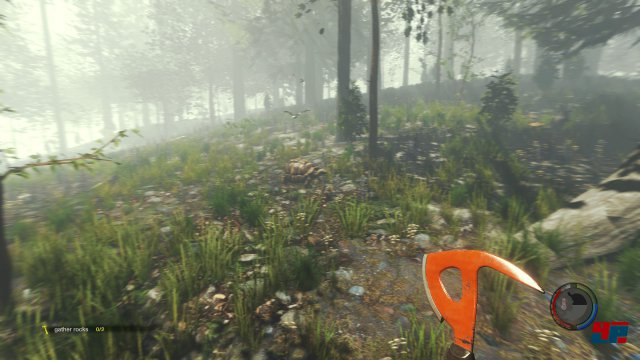 Screenshot - The Forest (PC)