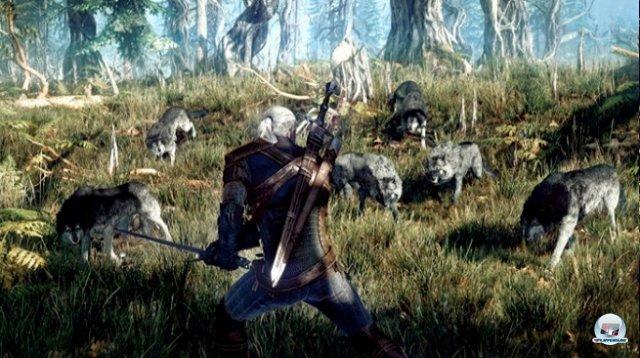 Screenshot - The Witcher 3: Wild Hunt (PC) 92461941