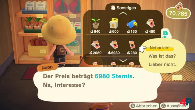 Screenshot - Animal Crossing: New Horizons (Switch) 92608338