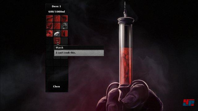 Screenshot - Darkwood (PC)