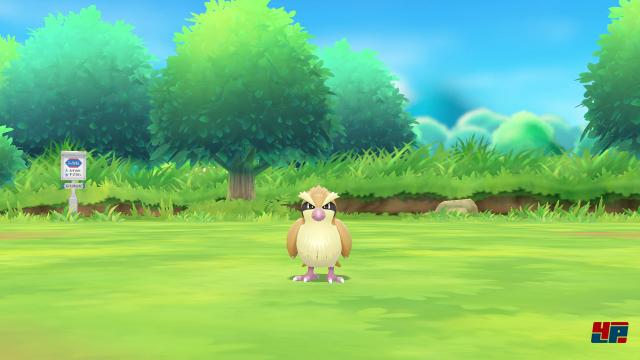 Screenshot - Pokémon Let's Go,Pikachu! & Let's Go, Evoli! (Switch) 92566052