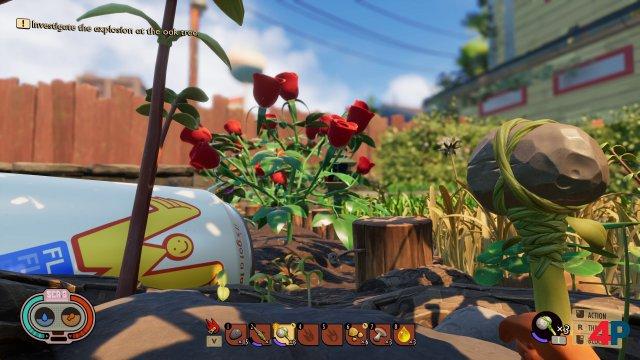 Markante Blumen (Farbe der Blüten) und übergroße Alltagsgegenstände helfen bei der Orientierung im Grasdschungel.