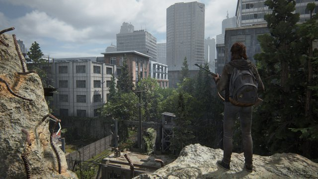 Screenshot - The Last Of Us Part 2 (PS4) 92615578