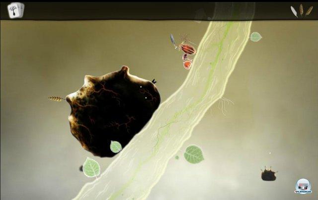 Screenshot - Botanicula (PC) 2343497