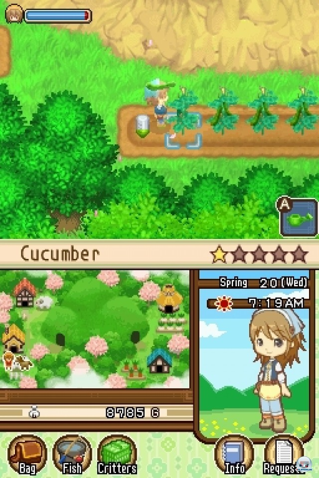 Screenshot - Harvest Moon: The Tale of Two Towns (NDS) 2231997