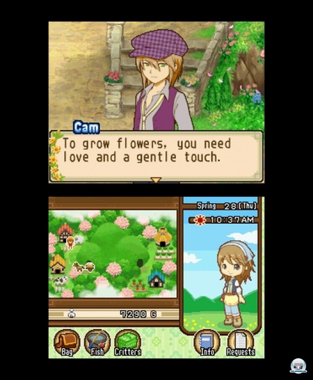 Screenshot - Harvest Moon: The Tale of Two Towns (NDS) 2232062