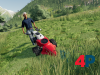 Alpine Landwirtschaft Add-On
