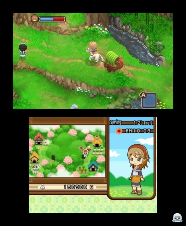 Screenshot - Harvest Moon: The Tale of Two Towns (3DS) 2232168