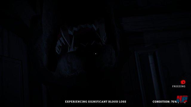 Screenshot - The Long Dark (PC) 92491329