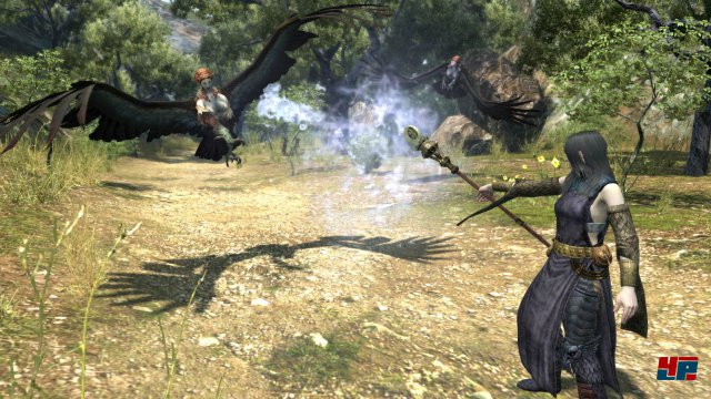 Screenshot - Dragon's Dogma Online (PC) 92502577