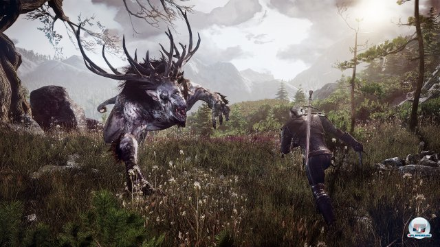 Screenshot - The Witcher 3: Wild Hunt (PC) 92467036