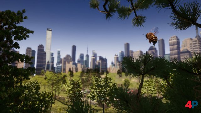 Screenshot - Bee Simulator (PC) 92594629