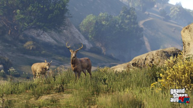 Screenshot - Grand Theft Auto 5 (PlayStation4) 92490269