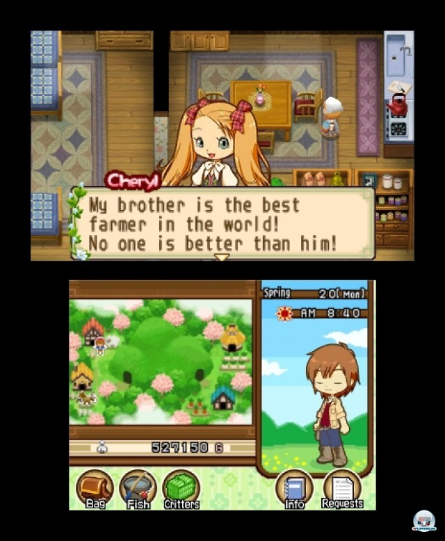 Screenshot - Harvest Moon: The Tale of Two Towns (3DS) 2232253