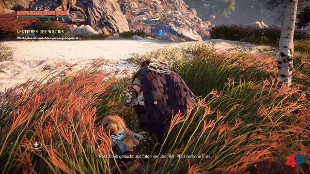 Screenshot - Horizon Zero Dawn (PC) 92621136