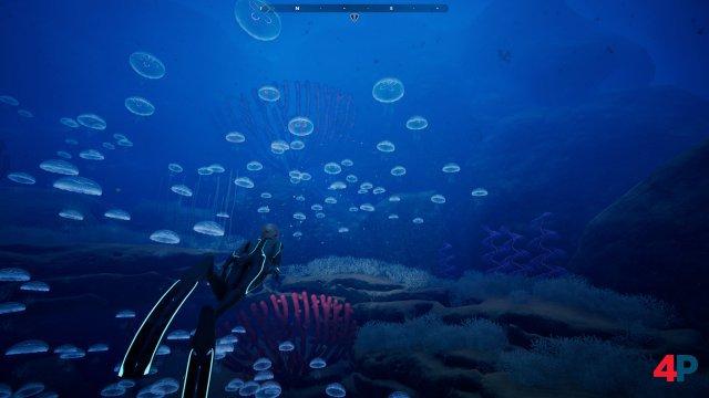 Screenshot - Beyond Blue (PC)