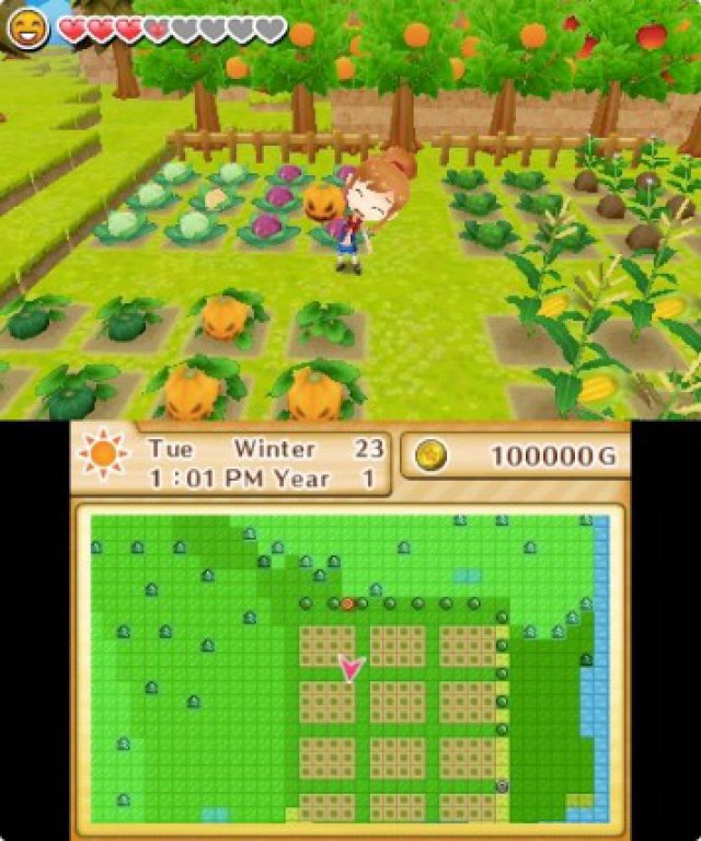 Screenshot - Harvest Moon: Das verlorene Tal (3DS) 92504997