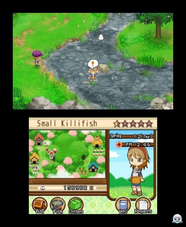 Screenshot - Harvest Moon: The Tale of Two Towns (3DS) 2232188